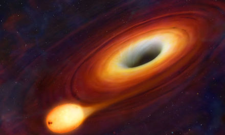 Structure of the black hole- In detailed